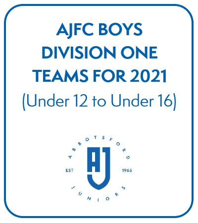 AJFC Boys Division One Teams for 2021 - Under 12 to Under 16